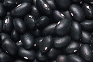 blackbean
