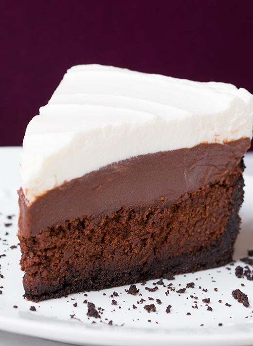 Mississippi Mud Ice Cream Cake