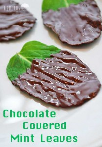 chocolate-covered-mint-leaves