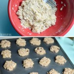 2 Ingredient Cookies